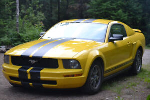 2005 FORD MUSTANG V6 PROPRE