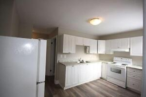 Stevenson/Adelaide Bright, Beautiful 3 Bdrm Unit on Main Floor!