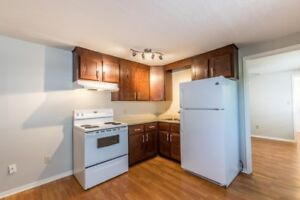 Renovated 1 Bedroom Apartment Downtown Moncton - AVAILABLE NOV 1