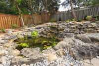 Pond Cleaning & Openings - Packages Available