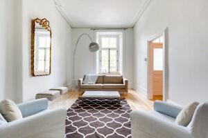 Magnifique appartement de 2 niveaux sur le Plateau Mont-Royal