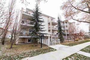 Large Fully Furnished Whyte ave condo for rent - March RENT FREE