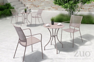 Set of 2 indoor outdoor patio chairs with cushions