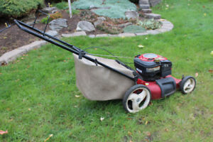 Gas-powered Lawmower for Sale - Get a jumpstart on Spring 2019!