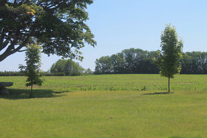 WORK in farm in lou of free use of home & private room Kawartha Lakes Peterborough Area image 3
