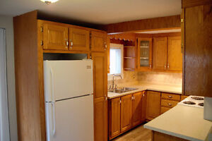 2 Bedroom House Close to MUN and Downtown - 5 Summer Street St. John's Newfoundland image 5