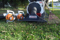 3D LAWN CARE - Grass Cutting, Yard Work, Spring Clean-Up