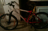 STOLEN Gamma Vision mountain bike