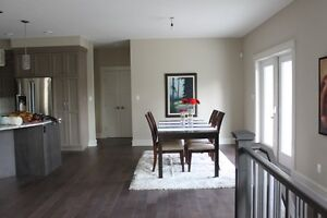 Ikea Dining Room and Coffee Tables, Area Rug