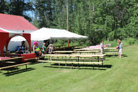 PICNIC TABLE RENTAL
