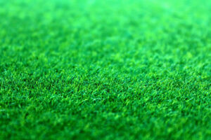 Tower Landscaping Lawn Cutting & Lawn Care is our Passion!!