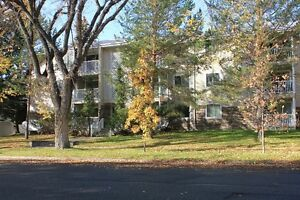 Prime Southside , Large 1 bdrm, Utilities included!