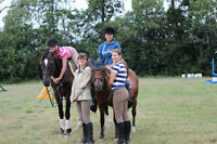Summer Working student positions available for summer at horse