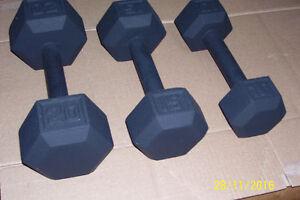 3 Hex Dumbells 20,15 &10lbs Windsor Region Ontario image 1