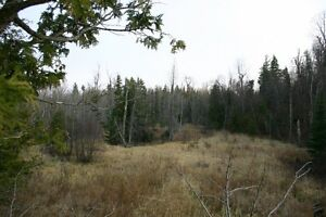 100 Plus acres of hunting land