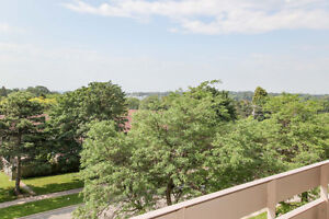 Stunning 3 Bed Condo Move in Ready