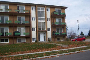 Waterloo-Studio apartment - renovated-all in price $700