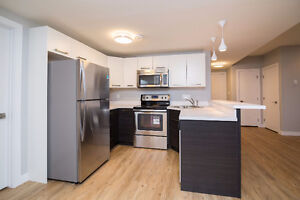 Two Bedroom Basement Suite Available