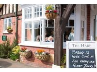 Kitchen Porter - The Hare in Tundbridge Wells