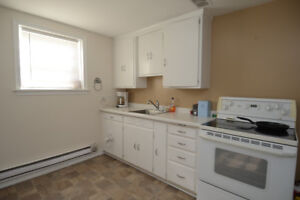 Basement Suite available January 1st