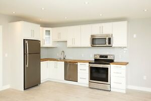 2 bedroom apartment in historic Roncesvalles