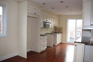 Lasalle Large Fully Renovated Duplex