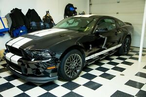 2014 Ford Mustang Shelby GT500 Coupe (2 door)