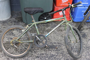 Small Mountain Bike (BMX size)