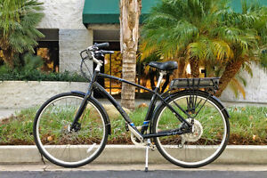 Raleigh Detour IE $1500 (was $3200)