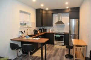 Brand New One Bedroom Apartment - Fully Equipped