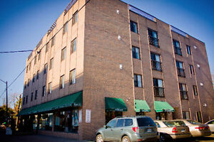 4 Bedroom Apartment Downtown Close to Metro, Campus and More! Kingston Kingston Area image 5