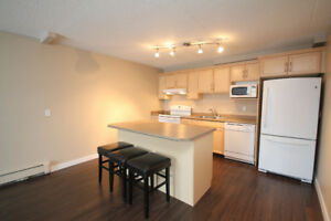 *** Newly Renovated - One Bedroom Condo, For Rent ! ***