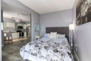 A Modern and Upgraded 1BR Vancouver High Rise Apartment / Condo