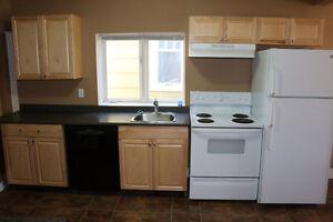 nicely renovated broders annex $1275 utilities inc Regina Regina Area image 3
