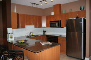 Location, Location, spacious DT condo in the heart of the action