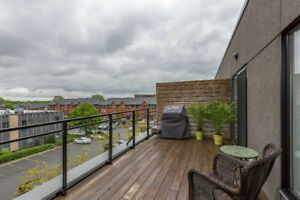 Penthouse loft with private terrace for rent as of November 1