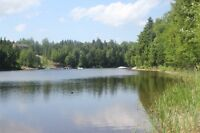 3 Gorgeous Waterfront Lots on Long's Creek