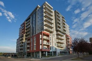 Brand new modern condo for rent Gatineau Hull Ottawa à louer