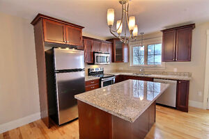 Open Concept Condo For Sale in downtown ChTown