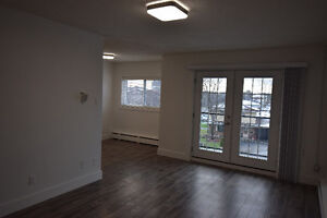 Must See Renovated top to toe 2 Bed Suites  insuite Laundry Kitchener / Waterloo Kitchener Area image 4