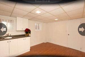 *****Newly Renovated furnished WALKOUT Basement for Rent*****