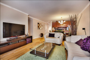 Large 2 Bedroom 2 Bathroom Apartment / Condo For Rent (downtown)