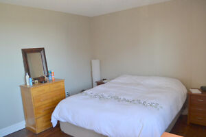 Large bedrooms in a furnished 2BDR apartment available Jan 1st Kitchener / Waterloo Kitchener Area image 4