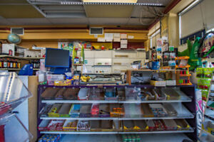 Busy Grocery store on st Sherbrooke for Sale ONLY $5000!