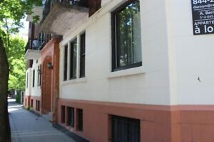 4.5/5.5 RENOVATED APTMS FOR RENT / MC GILL GHETTO