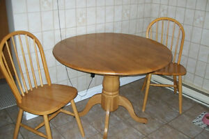 FOLD DOWN TABLE WITH 2 CHAIRS Windsor Region Ontario image 1