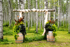 Sunshine Ranch Weddings and Special Events Williams Lake Cariboo Area image 6