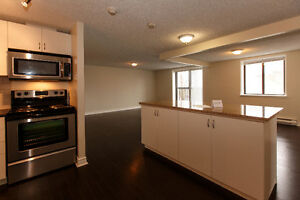 4 Bedroom Apartment Downtown Close to Metro, Campus and More! Kingston Kingston Area image 1
