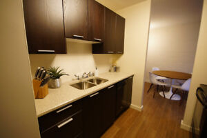 Renovated 1 bedroom apartment downtown with minimal stairs