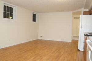 Lower Level Unit with bright windows and Laundry